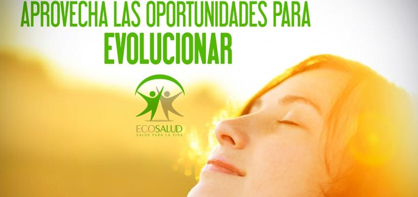 Formaciones en Ecosalud: instruirnos para la vida